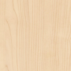 Black Forest Light Maple | Wood panels | Pfleiderer