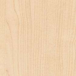 Black Forest Light Maple | Planchas de madera | Pfleiderer