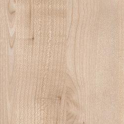 Norway Maple | Wood panels | Pfleiderer