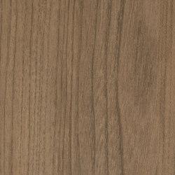 Salisbury Elm Grey | Planchas de madera | Pfleiderer