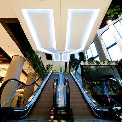 Escalators & Moving Walks | Moving Walks | Escalators | KLEEMANN Elevator Manufacturer