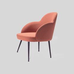 giulia/m   Chairs   LIVONI 1895