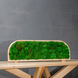 Moss Devider | Table moss devider | Sound absorbing table systems | Ekomoss