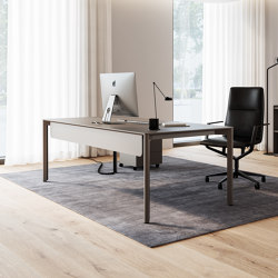 Slide Schreibtisch | Stehtische | RENZ