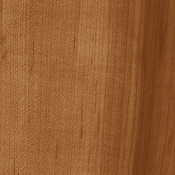 3M™ DI-NOC™ Architectural Finish Dry Wood, DW-1874MT, 1220 mm x 50 m | Fogli di plastica | 3M