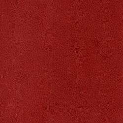 3M™ DI-NOC™ Architectural Finish Leather, LE-2782, 1220 mm x 50 m | Láminas de plástico | 3M