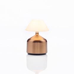 Demoiselle Small | Cap Opal | Bronze | Table lights | Imagilights