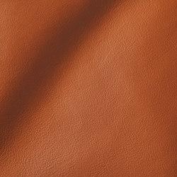 CITY Caramel | Natural leather | Studioart