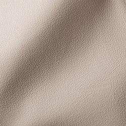 CITY Grisrose | Natural leather | Studioart