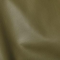 CITY Muschio | Natural leather | Studioart