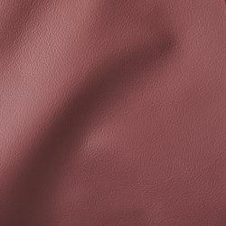 CITY Panama | Natural leather | Studioart
