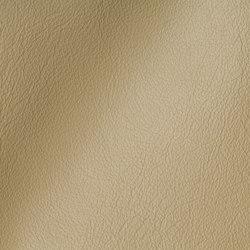 CITY Pastorius | Natural leather | Studioart