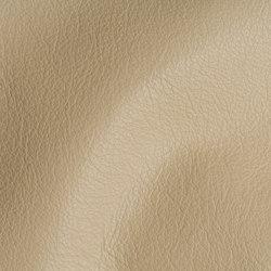 CITY Sand Stone | Natural leather | Studioart