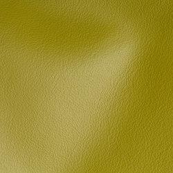 CITY Tundra | Natural leather | Studioart