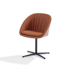 Dan | 2043 | Stühle | DRAENERT