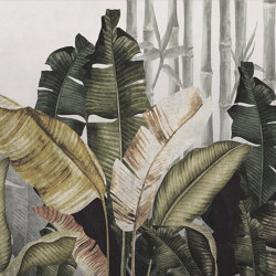 AP Contract | Digital Printed Wallpaper | Banana Plant DD120522 | Wall coverings / wallpapers | Architects Paper