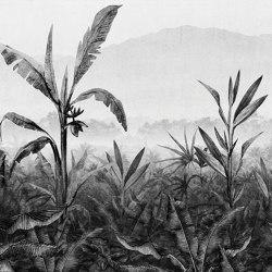 AP Contract | Digital Printed Wallpaper | Banana Plantation II DD120536 | Wall coverings / wallpapers | Architects Paper