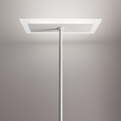 Dublight_FL   Free-standing lights   Linea Light Group