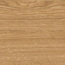 Altro Cantata™ Caramel Oak   Vinyl flooring   Altro