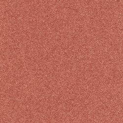 Altro Aquarius TM Starfish | Vinyl flooring | Altro