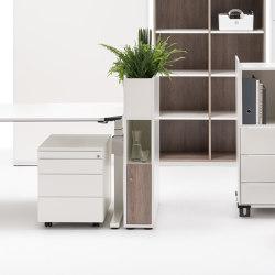 Winea Maxx | Sideboards | WINI Büromöbel