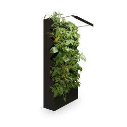 Clara | Plant pots | ELPO