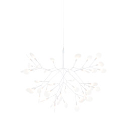 Heracleum II Suspended - Small White | Lámparas de suspensión | moooi