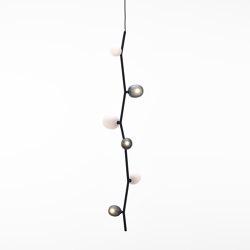 Ivy Vertical 6 PC1062 | Suspended lights | Brokis