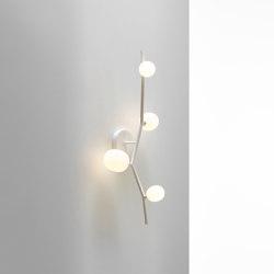Ivy Wall 4 PC1219 | Wall lights | Brokis