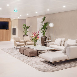 Project Move Slow | Amsterdam Zuidas with Move Slow by  Two O Five | Rugs | Frankly Amsterdam