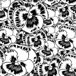 Aurora Floreale Black and White | Wall art / Murals | TECNOGRAFICA