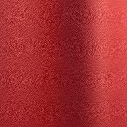 Bizon 154   Natural leather   Futura Leathers