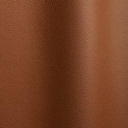 Bizon 4118   Natural leather   Futura Leathers