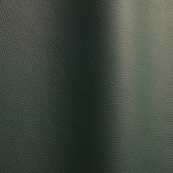Bizon 454   Natural leather   Futura Leathers