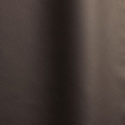 Bizon 458   Natural leather   Futura Leathers