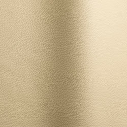 Bizon 463   Natural leather   Futura Leathers