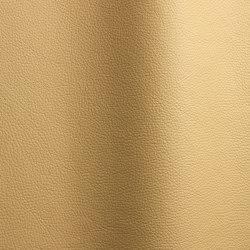 Bizon 468   Natural leather   Futura Leathers