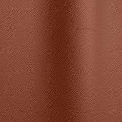 Bizon 480   Natural leather   Futura Leathers