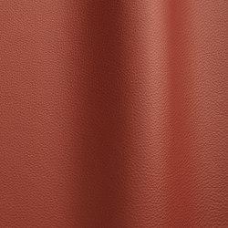 Bizon 5009   Natural leather   Futura Leathers