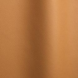 Bizon 5011   Natural leather   Futura Leathers
