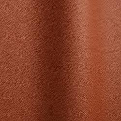 Bizon 5016   Natural leather   Futura Leathers