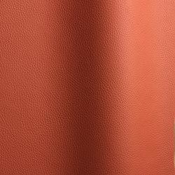 Bizon 688   Natural leather   Futura Leathers