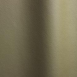 Bizon 8371   Natural leather   Futura Leathers