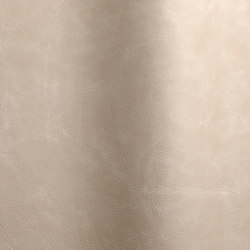 Etna 16102 | Cuero natural | Futura Leathers