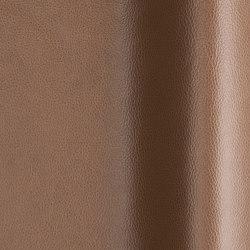 Upholstery fabrics   Fabrics