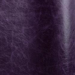 Pista Indigo | Naturleder | Futura Leathers