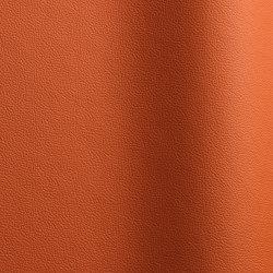 Sierra 100 | Natural leather | Futura Leathers