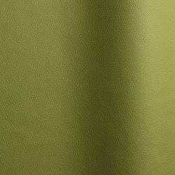 Sierra 104 | Natural leather | Futura Leathers
