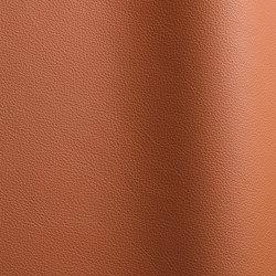 Sierra 305 | Natural leather | Futura Leathers