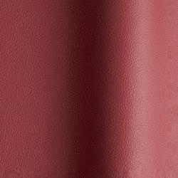 Sierra 340 | Natural leather | Futura Leathers